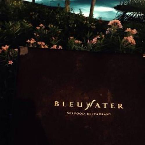 Bleuwater
