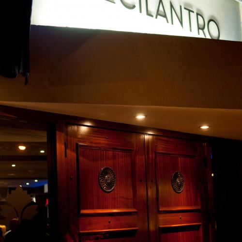 Blue Cilantro