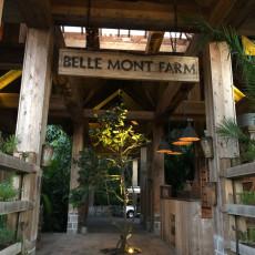Belle Mont Farm 2