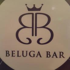Beluga 13