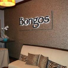 Bongo's 4