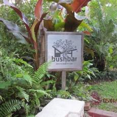 Bushbar 13