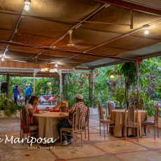 Café Mariposa 2
