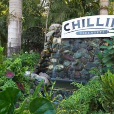 Chillin 3