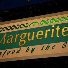Marguerites 8