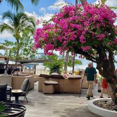 Ocean Lounge 2