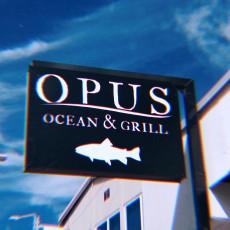 Opus 13