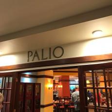 Palio 13
