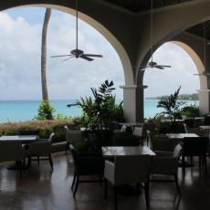 Palm Terrace 3