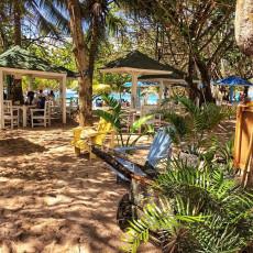 Restaurante Ananí 2