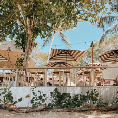 Sea Shed Restaurant 3