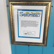 SeaGrapes 9
